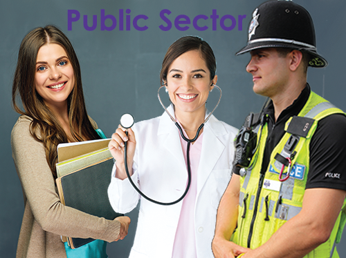 IPS Ltd - System Integration Solutions Public Sector image